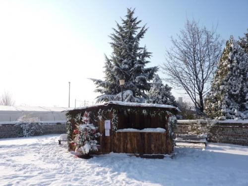 inverno1.JPG